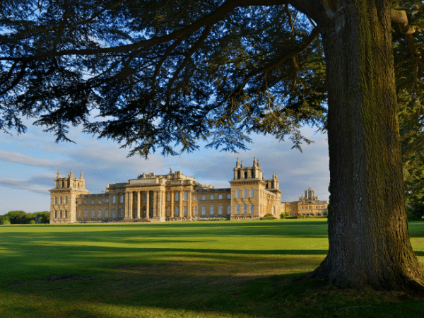 OXFORDSHIRE MURDERS, THAMES CRUISE AND BLENHEIM PALACE
